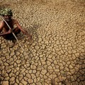 epaselect epa04768849 An Indian farmer sits in his dried up land in gauribidanur village, doddaballapur district, which is very close to Karnataka and Andhra Pradesh border around 85km from Bangalore, Indian, 26 May 2015. More than 500 people have died in a heat wave that has swept across India and is showing little signs of abating. The southern states of Andhra Pradesh and Telangana were the worst affected with temperatures reaching 48 degrees in some areas. Heat wave conditions have prevailed in the region since April but most of the deaths have been reported over the past 10 days, a news report said.  EPA/JAGADEESH NV