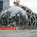 Amazon treehouse spheres seattle