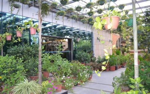 Nature Meets Luxe At The Gurgaon Office Of Navrasa Duende